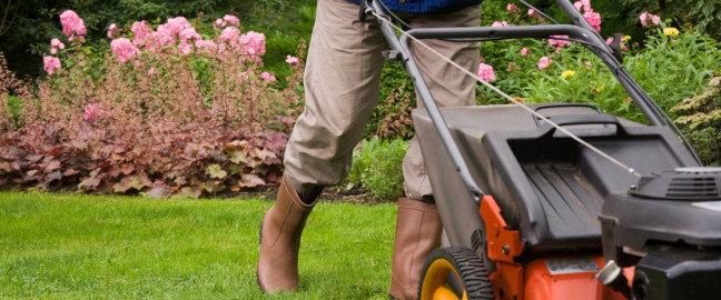 About - Landscaping, Outdoor Lighting, Paver Patios, Drainage, Irrigation